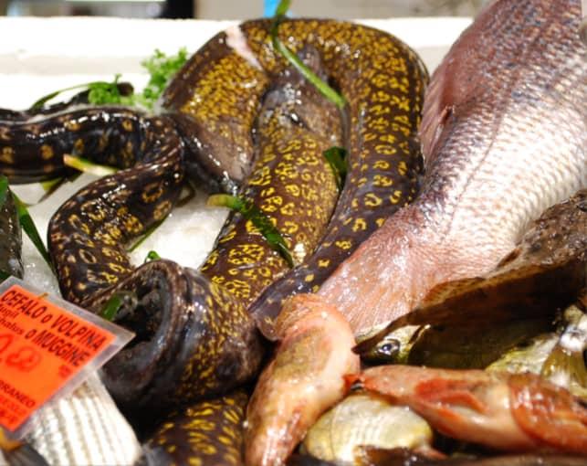 Una murena accanto ad altri pesci in vendita al mercato
